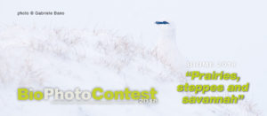 Copertina_home-Bano